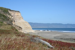 Drakes Bay in Point Reyes near Novato, CA