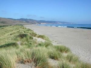 Limantour Beach near Novato, CA