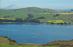 Tomales Bay near Novato, CA