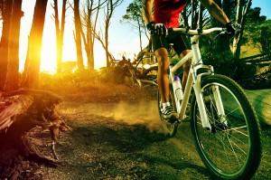 Mountain Biking Novato