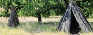 Olompali State Historic Park, Novato CA