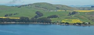 Tomales Bay, near Novato CA
