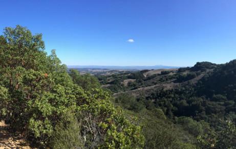 Indian Tree Preserve - Marin Hiking Trails