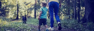 hiking trails for families with kids